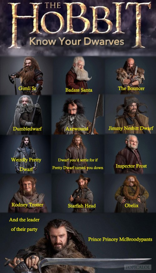 A Guide To The Dwarves in The Hobbit.